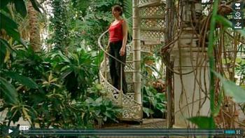 Motion i haven, Trappen