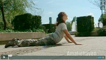 Motion i haven, Svanen