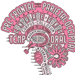 Hold - Hjernebaseret træning