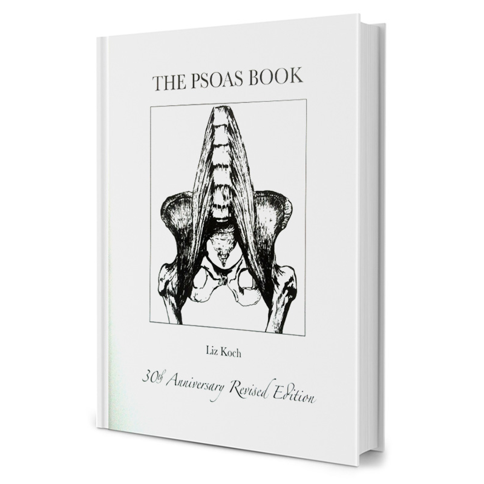 The Psoas Book