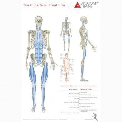 Anatomy Trains Plakater