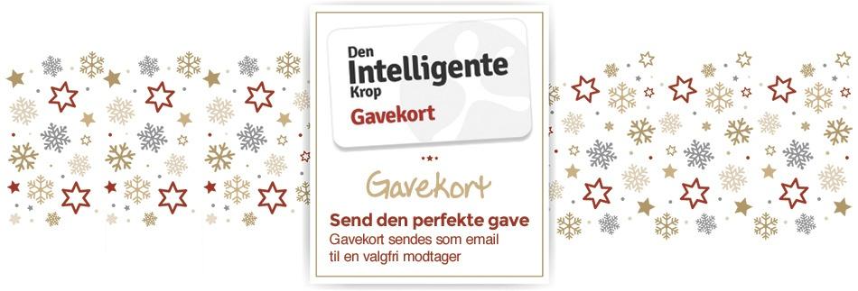 Send et gavekort som julegave... du finder det her!